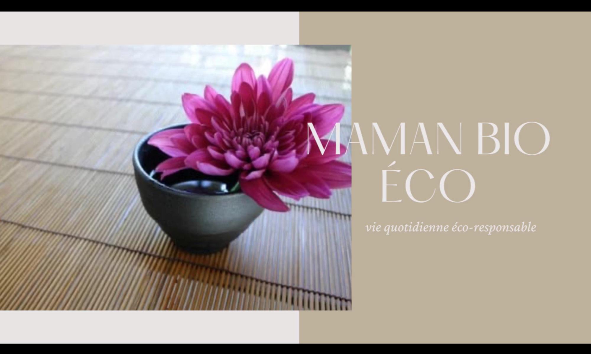 Blog d'une maman bio et eco responsable